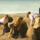 Dust My Shoulders Off - Vimeo Staff Picks